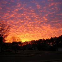 Winter Sunrise, Бартлетт