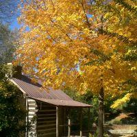 Autumn, Берри Хилл