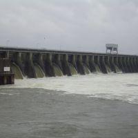Kentucky Dam, Глисон