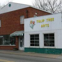 Tulip Tree Arts 808 S Roan St Johnson City, TN 37601, Джохнсон-Сити