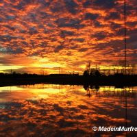 MTSU Sunset 2, Иглетон-Виллидж