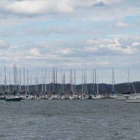 Concord Yacht Club, Конкорд