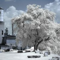 The Mill in Infrared, Лебанон