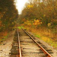 Tracking Fall, Линнвилл