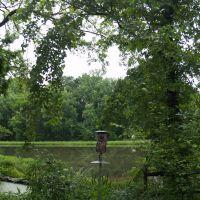 REFLECTION RIDING GREENHOUSE - CHATTANOOGA (TN) - U.S.A., Лукоут Моунтаин