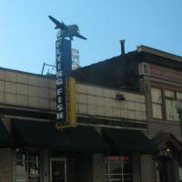 Flying Fish Memphis, Мемфис