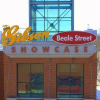Gibson Showcase, Мемфис