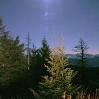 Moon Glow, Миддл Валли