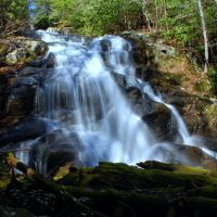 Lower Higgins Creek Falls, Миддл Валли