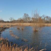 Millington, TN Pond, Миллингтон