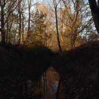 Bear Creek in Fall, Миллингтон