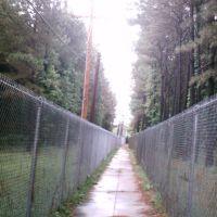 An alternate sidewalk, Миллингтон