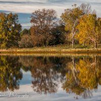Fall Reflections at Orgill Park, Миллингтон