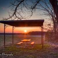 Picnic Table Sunset, Миллингтон