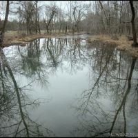 Little Butler Creek Reflections, Мичи