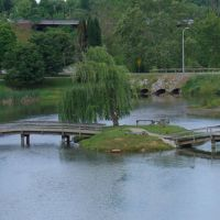 Greenbelt Park. Maryville, TN 5-24-09, Ниота