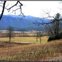 Cades Cove from the Big Tree, Tennessee, Ниота