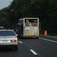 Camel trailer?, Онейда