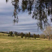 Park Lane Pasture Near Belmont TN, Онейда