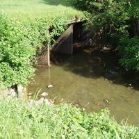 Bridge - Hwy 51, Рипли