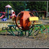 Playground, Рипли