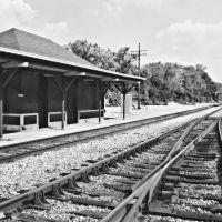 Old Station, Рутерфорд