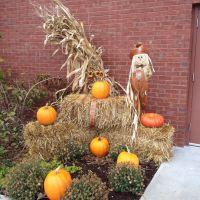 Its a harvest display at the Hampton Inn, Рутерфорд