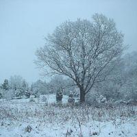 A Winter Scene in Clinton, TN, Саут-Клинтон