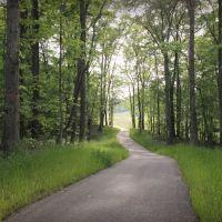 New Section of Haw Ridge Greenway Near Haw Ridge Tennessee, Саут-Клинтон
