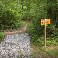 Saddle Trail from Greenway to Haw Ridge, Tennessee, Саут-Клинтон