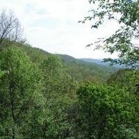 Morgans Steep, Sewanee, TN, Севани