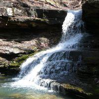 Morgans Falls, Севани