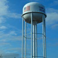 Selmer, TN water tower, Селмер
