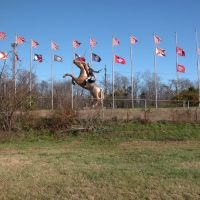 Nathan Bedford Forrest and Flag Display, Off I-65, South of Nashville, Tennessee, Сентертаун