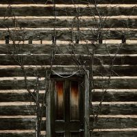 Sam Davis House, Smyrna, TN, Смирна