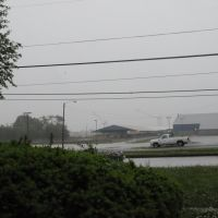 Rainy Day, Уайт-Хаус