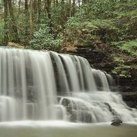 Laurel Run Falls, Фолл-Бранч