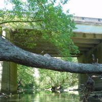 Harpeth River @ Franklin Road Bridge, Франклин