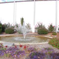 Small Fountain in Lexington, Хендерсон