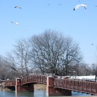 Friendship Bridge, Hendersonville, TN, Хендерсонвилл