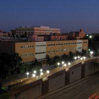 UT Arlington, Арлингтон