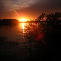 Sunrise, Арп