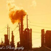Hot Fumes, Беверли-Хиллс