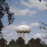 Brownsville 2001, Браунсвилл