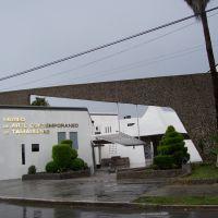 Museo de Arte Contemporaneo, Браунсвилл