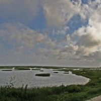 Estuary at Galveston, Бэйтаун