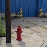 Fire plug., Галена-Парк