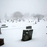 Snow Day (2008), Дентон