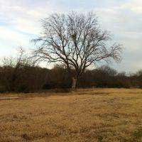 Woodrow Park, Denton, TX, Дентон