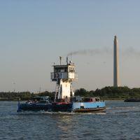 Lynchburg Ferry near the San Jacinto Monument, Дир-Парк